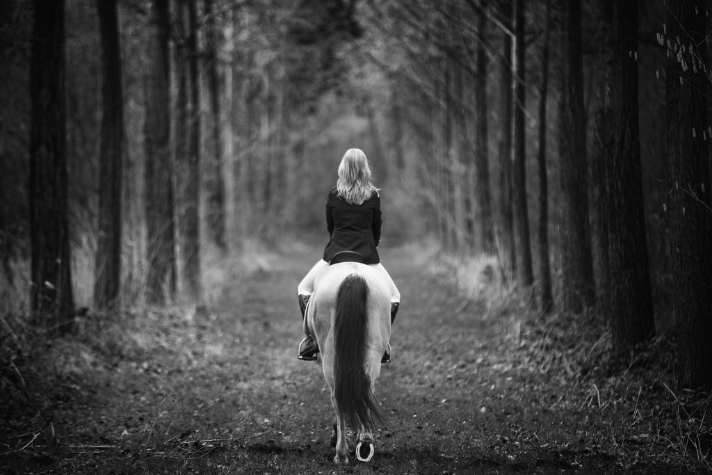 Fotoshoot paard ruiter