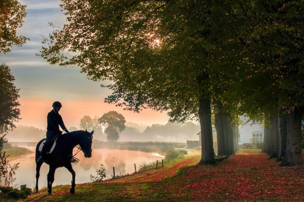 Unieke fotoshoot paard met ruiter.