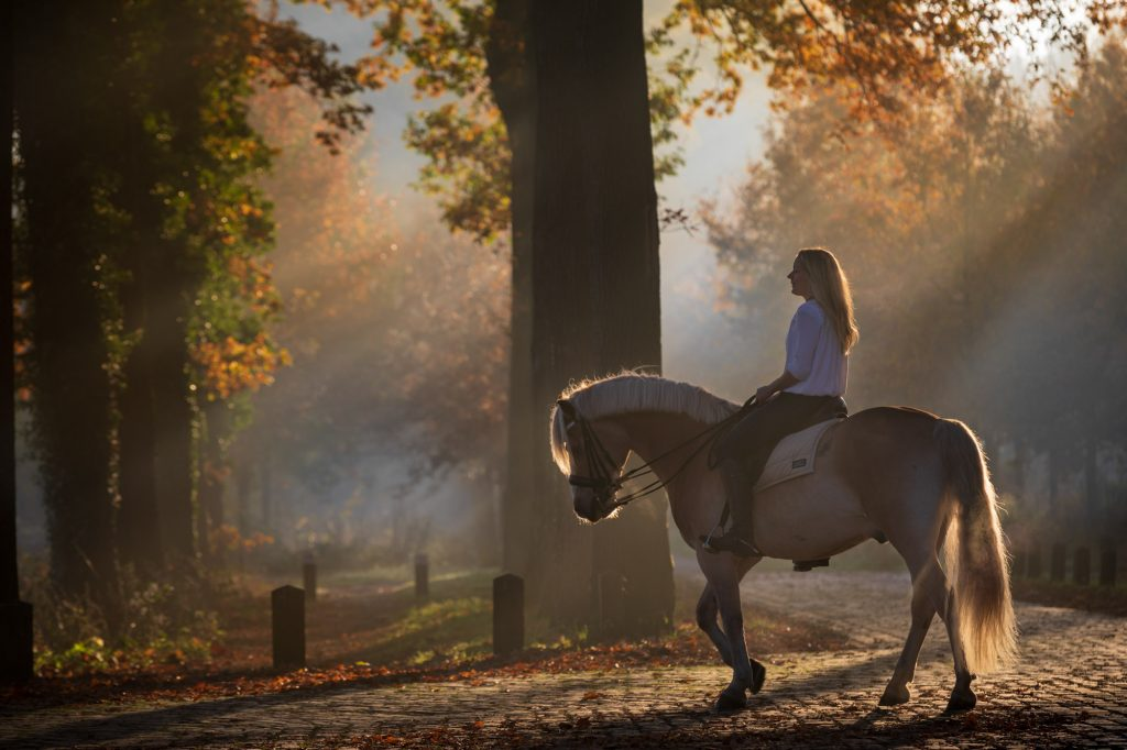 Fotoreportage vrouw en paard.