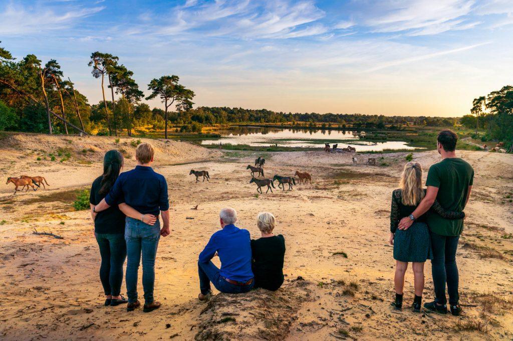 Familie bewonderd kudde IJslanders in het Brabants landschap.