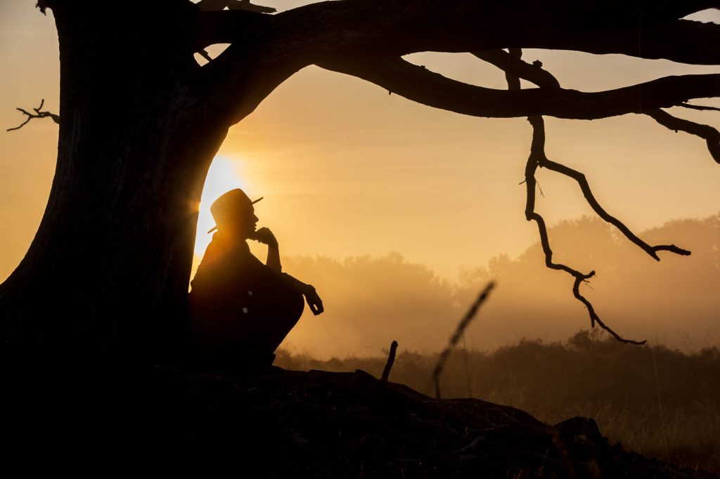 Unieke fotosessie tijdens zonsopgang in de mistige bossen.